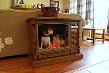 Ideas to Reuse my Console TV / by Karen Taylor