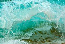sea / by Ada Rosado