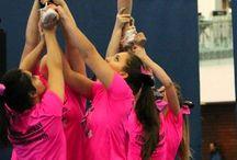 Elite Cheer teams / Pictures & videos of our Elite Level 2+ teams. #panthercheer