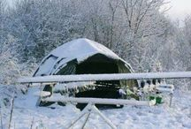 Invierno / CARPdiem Carpfishing - Invierno, capturas en nieve.