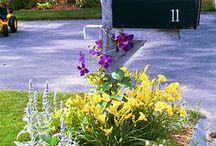 Mailbox Gardens