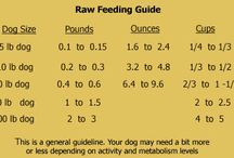 Barf food - raw food