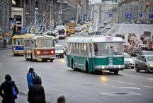 Buses,trolley