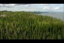 Suomi, Finlandia