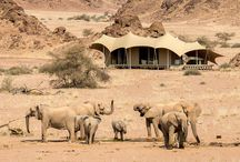 10 Day Luxury Namibia Safari / Explore Namibia on our 10 Day Luxury Namibia Safari through Sossusvlei, Damaraland, Skeleton Coast and Etosha National Park.
