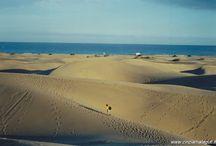 My Canary Islands