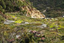 Mountains / Sagada, Mountain Province
