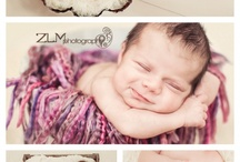 Newborn Photography / by Holly Maus