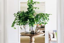 Hello Greenery / Inspiration for bringing a little (or a lot!) of greenery into your home! Every space could use some plant life and these green-thumb inspiration images are rocking it!