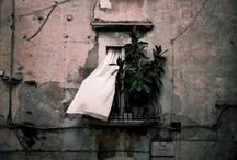 ITALIA / by daniele ferretti