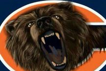 Chicago Bears Photos / Our Favorite photos of the Chicago Bears