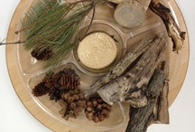 IDEAS: Nature Tables / Trays