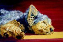 Yorkshire Terrier Art / My art of the Yorkshire Terrier dog. Lyn Hamer Cook©