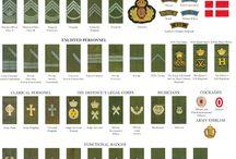 紋章と階級