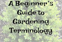 Gardening Tips & Tricks