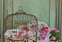 Beautiful!!!! / by Aurelia A
