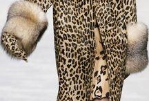 beauty leopard 11