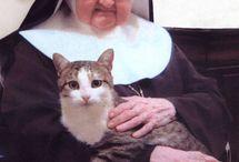 Madres Franciscanas