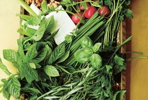 Cooking with Herbs / Aromatic and vibrant, fresh herbs automatically lift any dish, and can even be eaten as a starter on their own. Here are a few of our herb-packed favourites from the library.