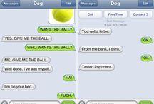 Dog's sms