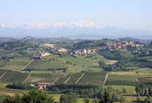 Piedmont / Piemonte has a wonderful cultural and artistic property, but also given beautiful landscapes and nature: from its high peaks, perfect for the winter sport