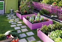 Outdoor & Giardinaggio