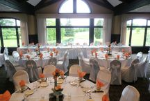Christie & Brandon's Wedding / Christina & Brandon's wedding-June 21st at Bartlett Hills Golf Club & Weddings located in the Chicago Suburbs.
