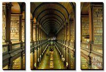 Basement Library / by Melanie C