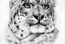 macan putih
