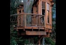 Tree House, Dream House