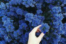 Tumblr / Tumblr pics inspiration