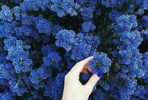 Dark Blue Aesthetic