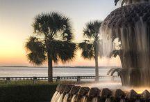 Charleston's Charm / Photography of Charleston, SC