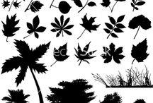 Flower & Leaf GRAPHICs