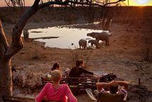 Namibia - Etosha NP