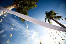 Destination  Weddings / Have you ever considered a destination wedding? Did you get married in Cancun, Playa del Carmen or the Rivera Maya?