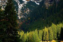 Karpathian Transylvania