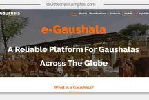 Divi charity website examples