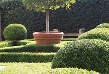 Gardens / (boxwood, espalier, follies .... ) / by Susan