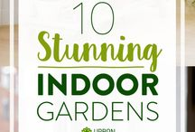 Urban gardening / Indoor gardens  / by Nicole Brock