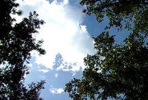 Nature Music Videos ( time lapse, etc ) / Artistic music videos of nature and time lapse of clouds by Scott Hermann