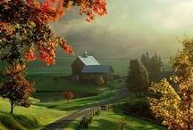 Farm / by Steven Balvanz