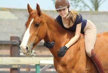 natural horsemanship