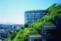 Proyectos verdes en las Ciudades