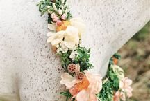 Wedding Inspiration | Furry Flower / Floral accessories for our furry friends.