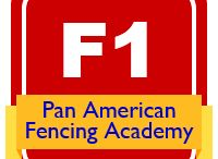 Pan American Fencing Academy / Certifications and awards of the Pan American Fencing Academy, a center managed by Salle Green LLC and devoted to train modern fencing coaches and providing products they can use to enhance the services they offer their athletes.
