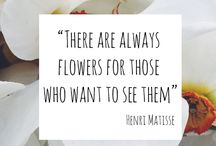 Garden Quotes & Wisdom / Garden quotes and wisdom to inspire and make you smile