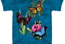 Butterflies, Insects & Pollinators / Butterflies & Insects that make our world so pretty and pollinate our plants!