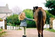 Horses / by Nicole Bruce