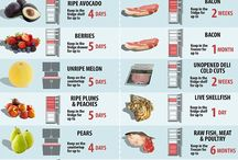 Food Storage/Prep